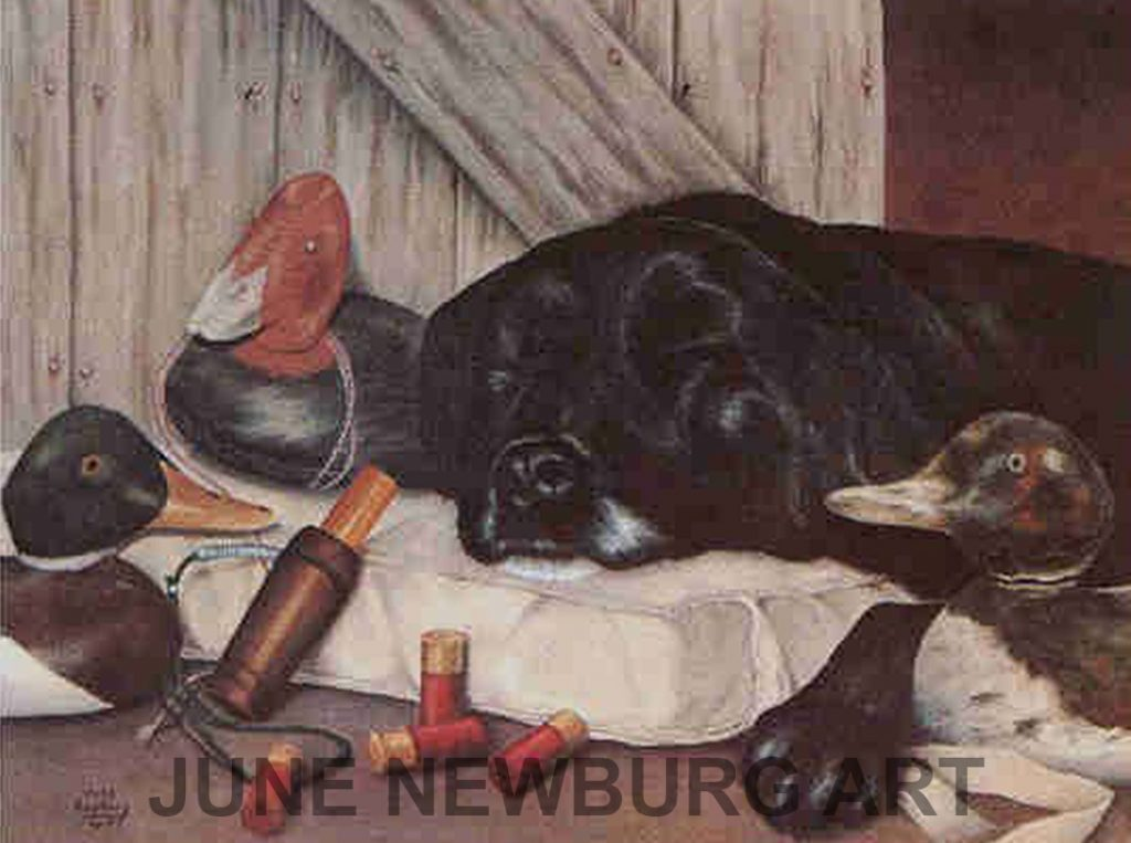 """Dog Tired"" 1984"